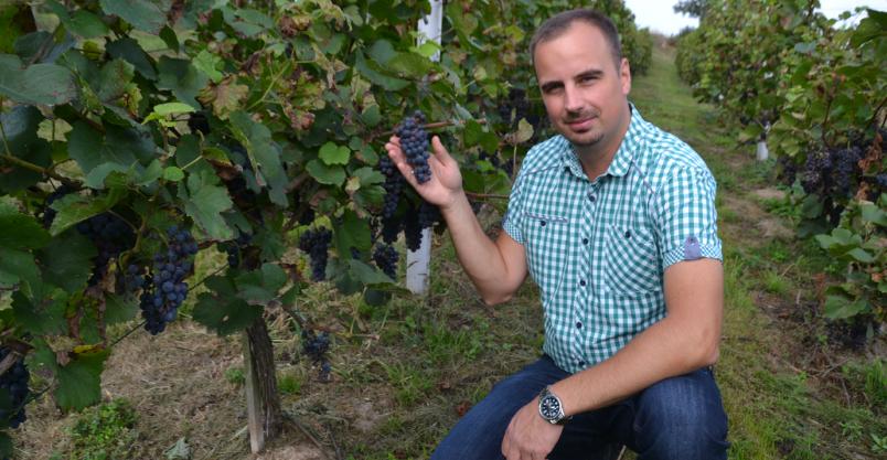 Konstruktor z Uniejowic wchodzi na rynek z własnym winem. To złoty medalista
