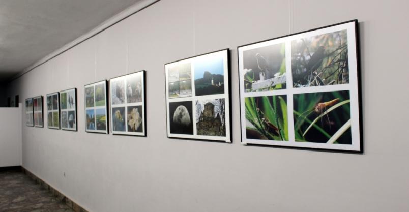 Internetowa wystawa zdjęć w ZOKiR