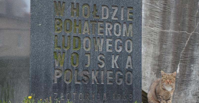 "Złotoryjskie ""monumentum non grata"""