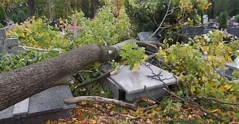 Zarządca cmentarza oszacował straty po orkanie